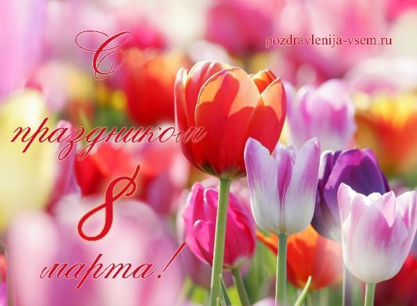 Фото открытки 8 марта с тюльпанами
